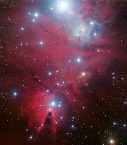 NGC 2264 y el cúmulo Árbol Navideño. Crédito: ESO.