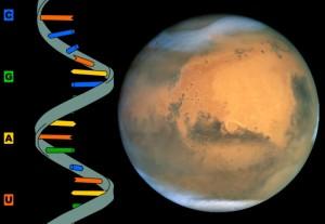 ARN y Marte