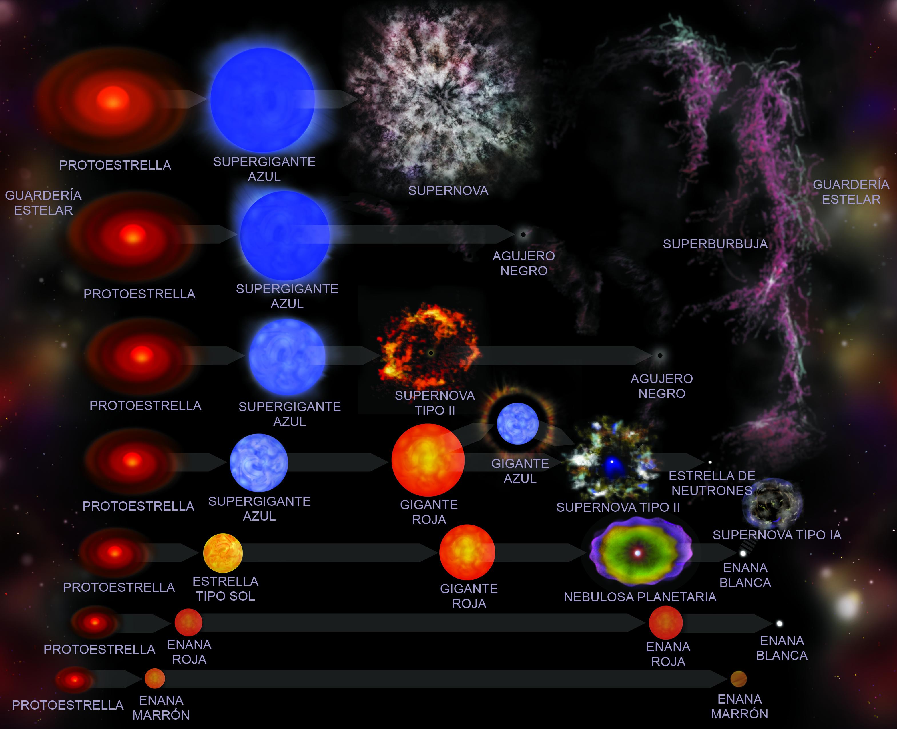 Resultado de imagen de La evolución estelar