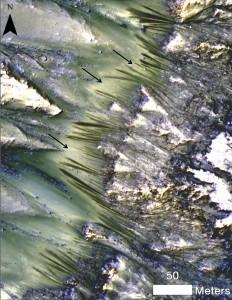 Cráter Palikir