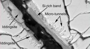Esta imagen de microscopio electrónico de barrido de una sección fina y pulida de un meteorito de Marte muestra túneles y microtúneles curvos. Crédito: NASA
