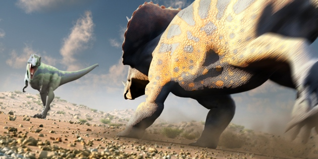 T-Rex contra un Triceratops