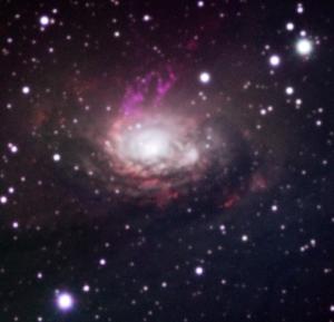 Galaxia Circinus