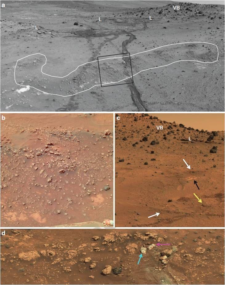 Sílice opalina en Marte